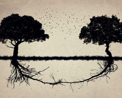 Bäume als Symbol für gesunde Grenzen setzen